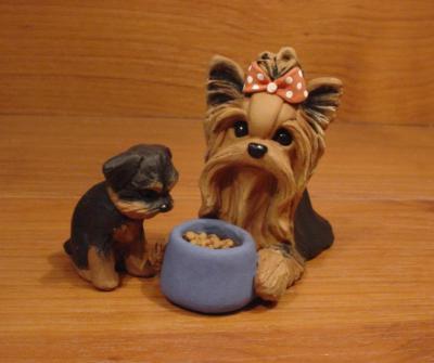 Original Yorkie Yorkshire Terrier Food Puppy Dog Sculpture Claydogz Mandyo OOAK